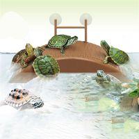 acuario tank turtle reptile basking terrace island plataforma casa dock pier decorations