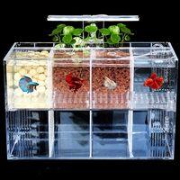 luz led acrilico transparente acuario mini betta fish tank bomba de agua de escritorio