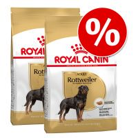 pack ahorro royal canin breed adulto - jack russell adult - 2 x 75 kg