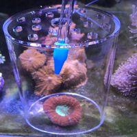 cubierta de proteccion de alimentacion de coral acrilico transparente tanque de arrecife marino acuario alimentador alim