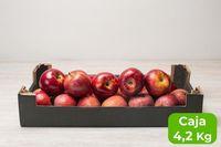manzana royal gala formato caja