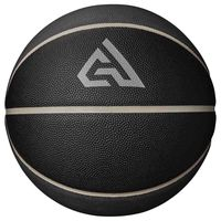balones giannis all court