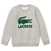 lacoste sudadera logo print crew unbrushed cotton blend 8 years grey chine