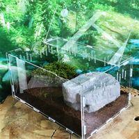 tanque de tortuga reptil superior kit de filtro de habitat acuatico jaula de cria de acrilico grande tanque de peces